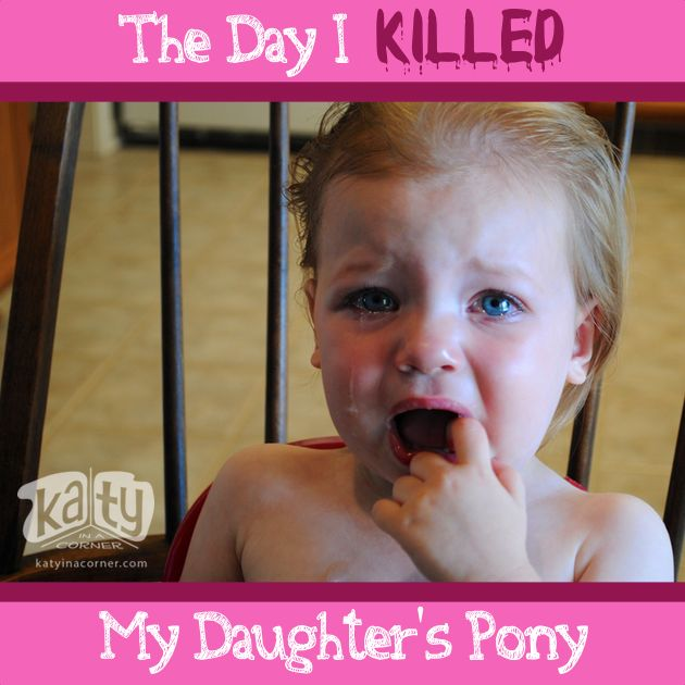 The Day I Killed My Daughter's Pony