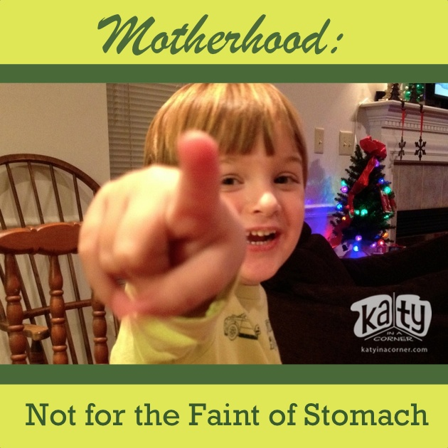 Motherhood:  Not for the Faint of Stomach